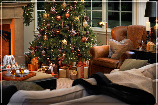 The Vermont White Spruce Tree from the Vermont Signature™ Collection