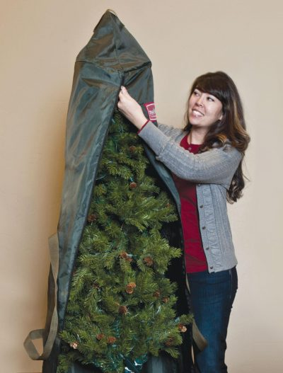 Use upright container bags to store trees that don't separate into parts