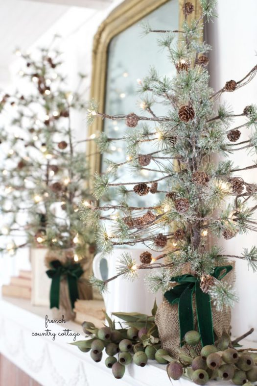 Potted trees have as much charm as a full-sized tree, for half the space