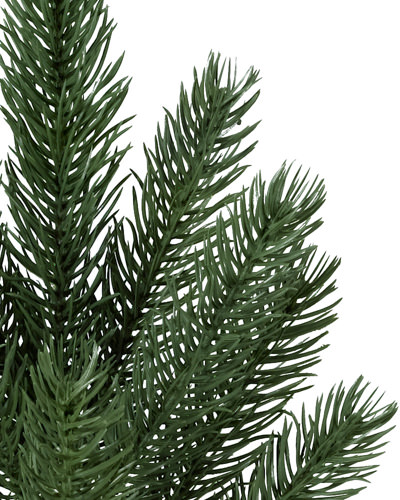 Balsam Hill's Vermont White Spruce™ up close