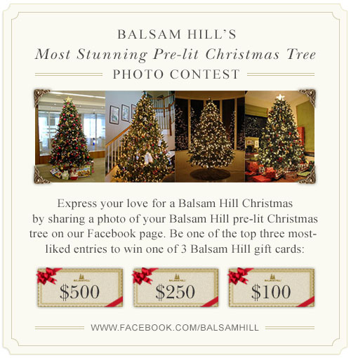 Balsam Hill's Most Stunning Pre-lit Christmas Tree Photo Contest