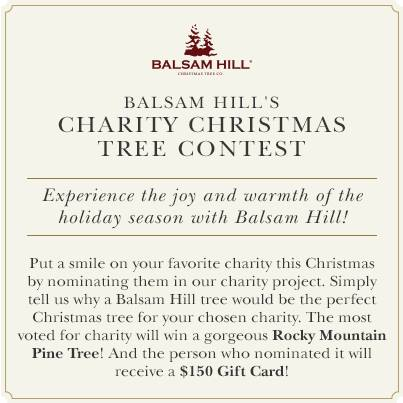 Nominate your favorite charity in Balsam Hill's Charity Christmas Tree Contest 2013
