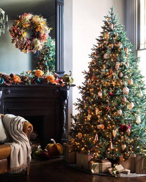 Colorado Mountain Spruce Christmas Tree
