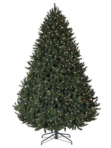Win a Rocky Mountain Pine for your favorite charity in Balsam Hill's Charity Christmas Tree Contest 2013