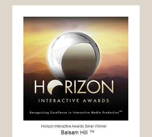 Balsam Hill wins Silver Award