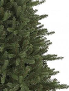 Pine needle foliage