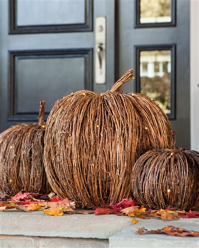 Pre-lit Twig Pumpkins by Balsam Hill