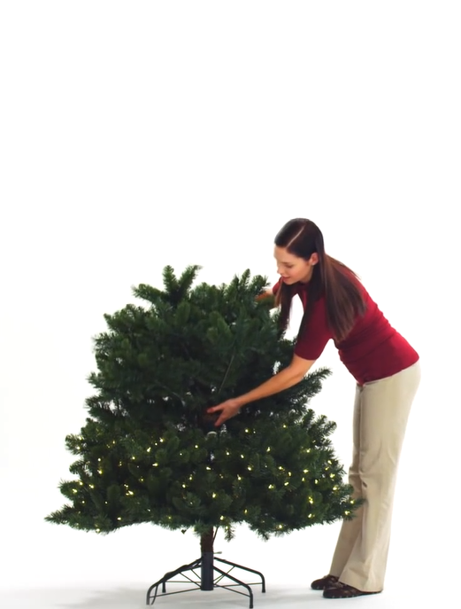Woman inserting middle section of tree