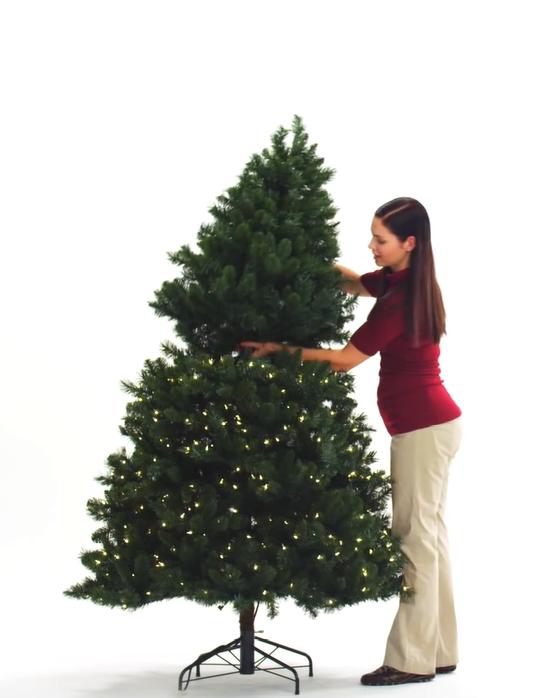 Woman inserting treetop