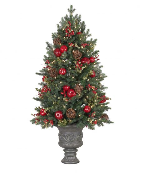 Balsam Hill Norway Spruce Holiday Potted Tree