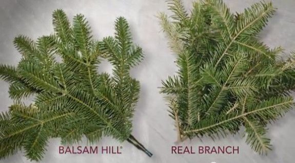 Realism of Balsam Hill foliage
