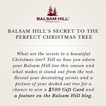 Secret to the Perfect Christmas Tree Photo