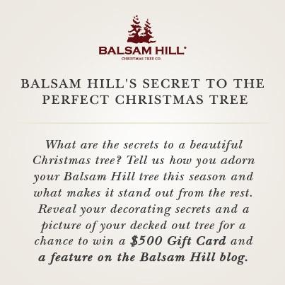 Secret to the Perfect Christmas Tree Photo