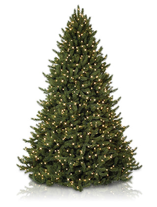For a more detailed review, read our post on The Difference between PVC and PE Christmas Trees.