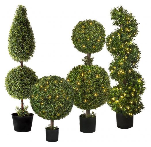 Balsam Hill Battery-Operated Boxwood Topiaries