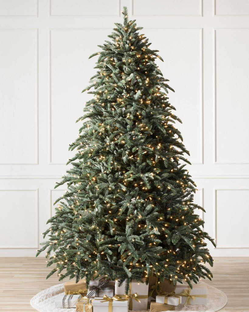 Full shot of one of the most popular christmas trees, the BH Noble Fir