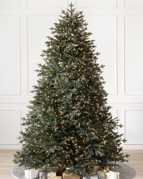 10 Most Popular Christmas Trees