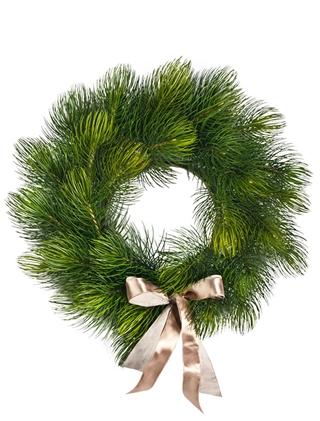 Majestic Pine Wreath