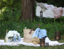 Picnic setup by Courtney of French Country Cottage