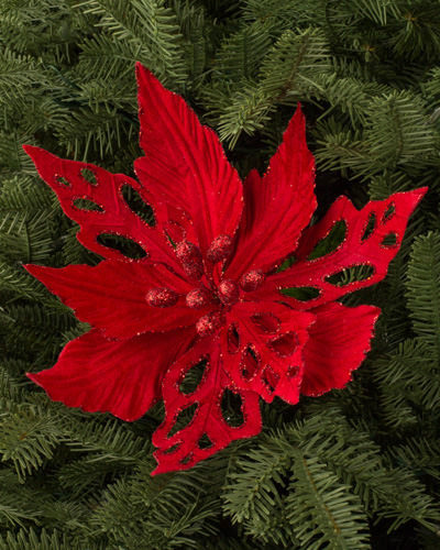 Beautiful red velvet poinsettias placed in between evergreen foliage