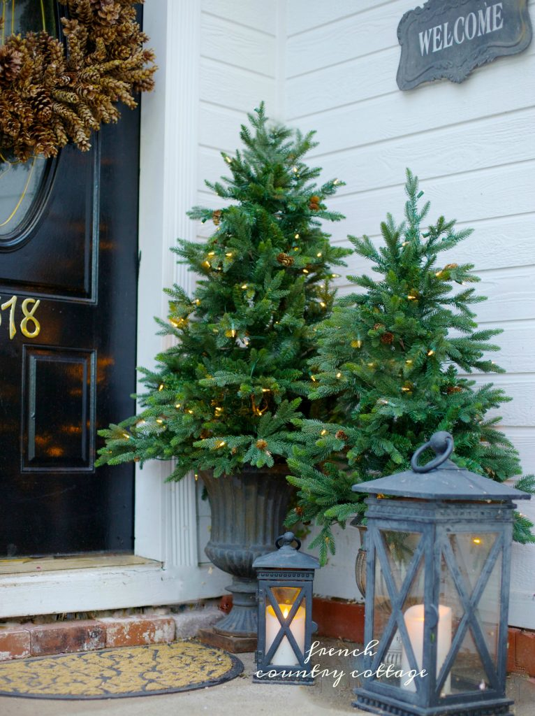 A Good Tip When Decorating With Potted Trees Is To Think About Unique Ways  Of Displaying Them. You Can Try Placing Them In An Urn Or In A Container  You ...