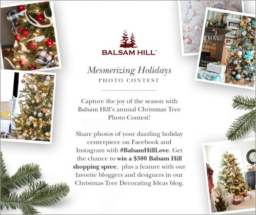 Join Balsam Hill\'s Mesmerizing Holidays Photo Contest - Balsam Hill ...