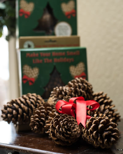 holiday scented pinecones - Christmas Tree Smell