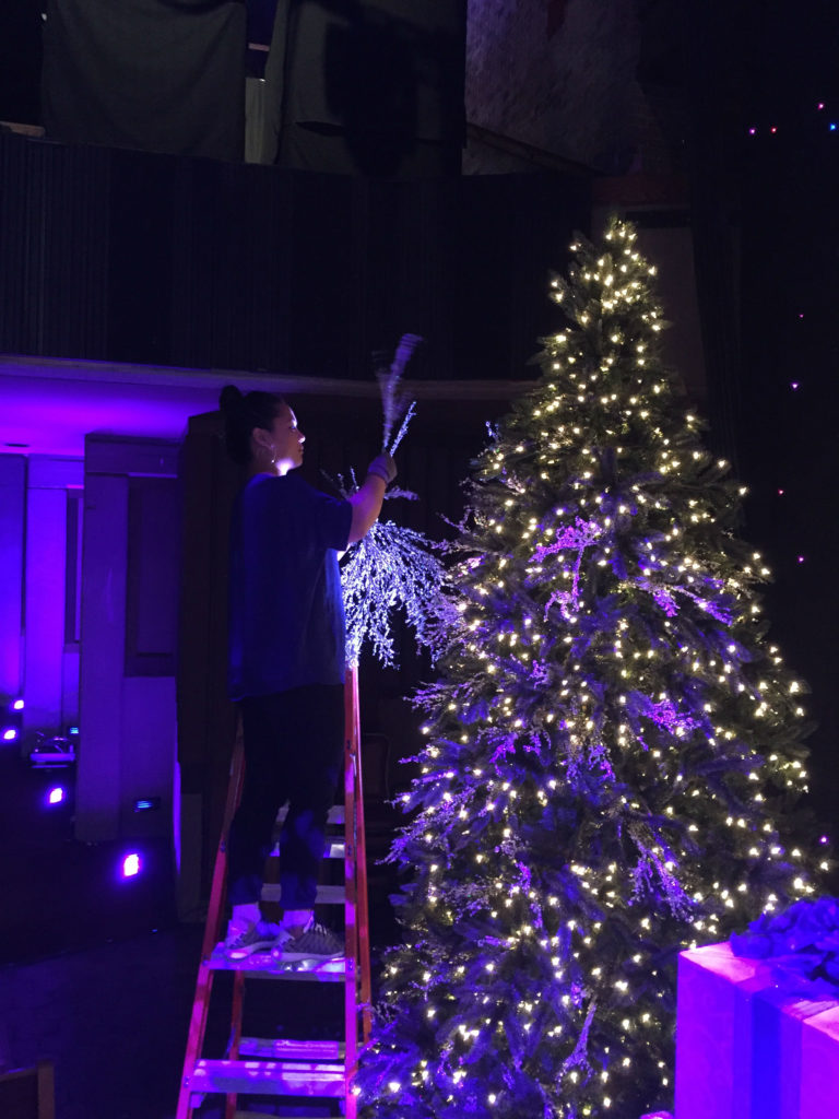 Arranging our beautiful Iced Glitter Tree Picks