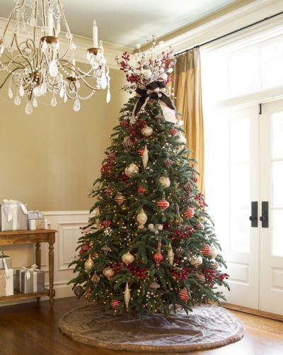 The BH Noble Fir is a classic among full-shaped trees