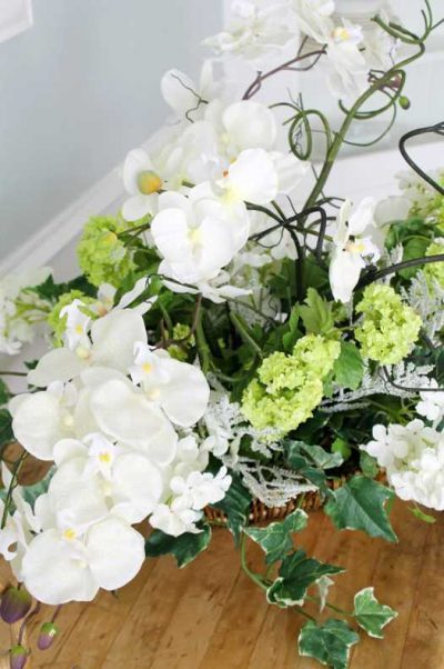 Beautiful orchids can now be enjoyed without their high maintenance