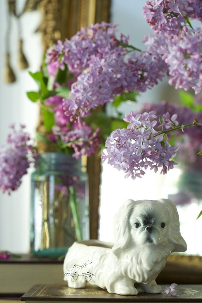 Detailed shot of purple lilac flowers and small dog planter
