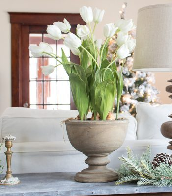 Potted White Tulips