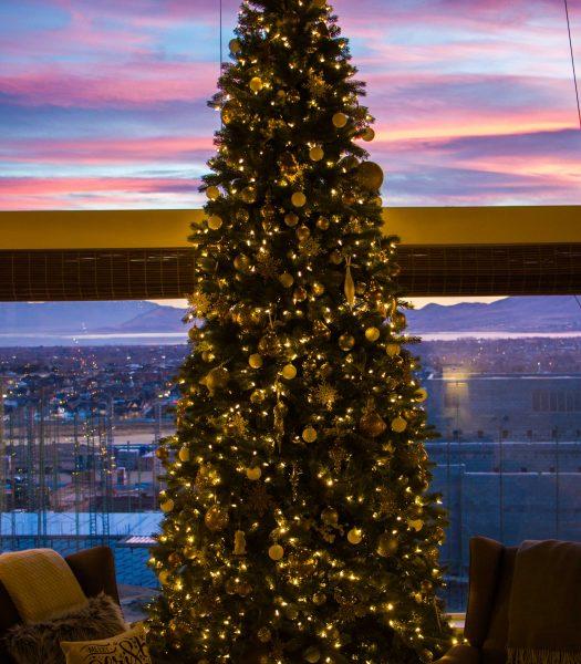 Heidi of Honeybear Lane's Christmas Tree