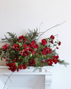 Red Poinsettia Stems