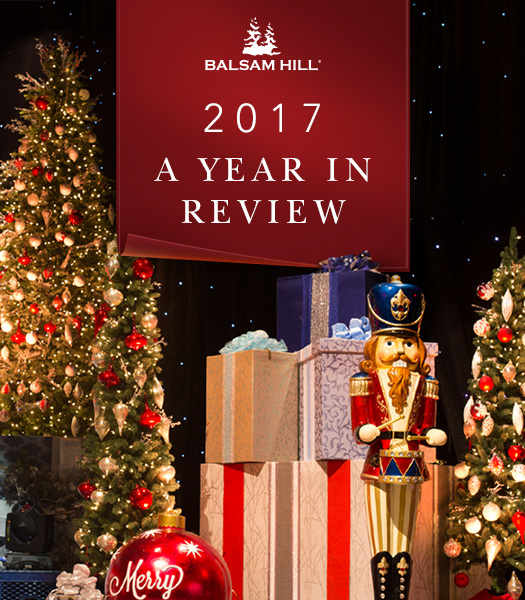 BH 2017 Year in Review Banner