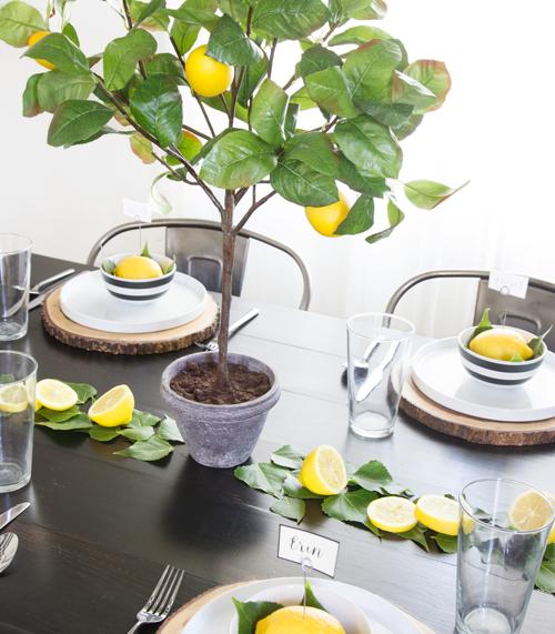 Small Meyer Lemon Tree