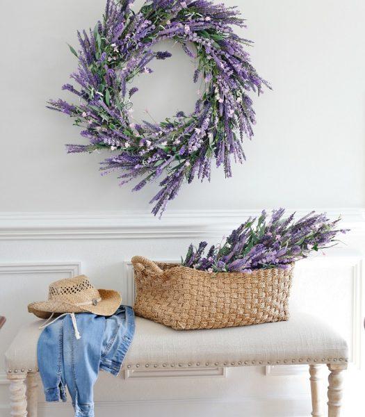 Provencal Lavender foliage