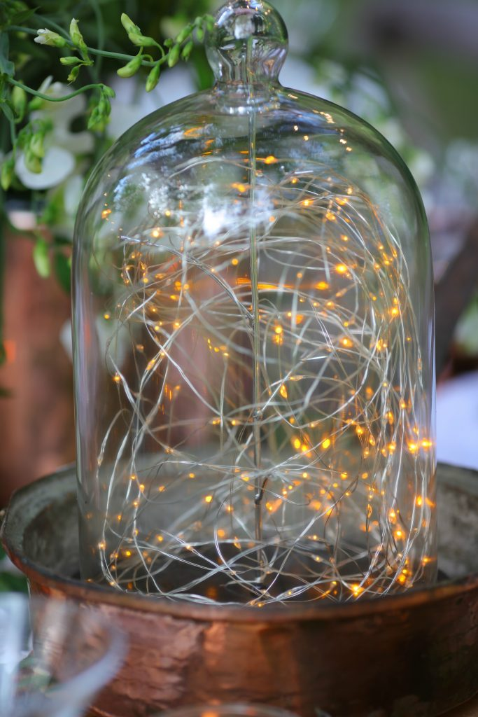 fairy lights cloche