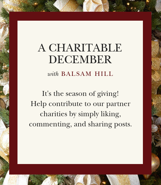 A Charitable December