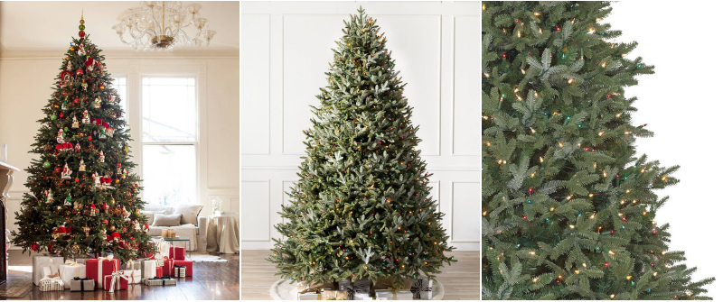 Black Friday Sale BH Fraser Fir