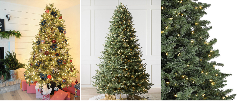 Black Friday Sale Balsam Fir