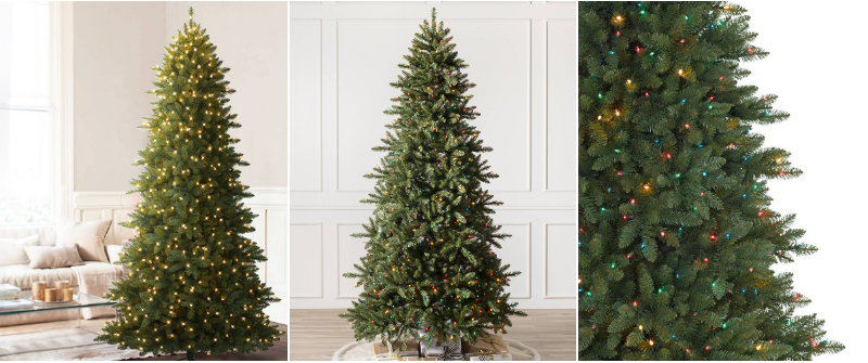 Black Friday Sale Berkshire Mountain Fir