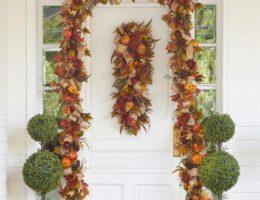 Fall Harvest Foliage