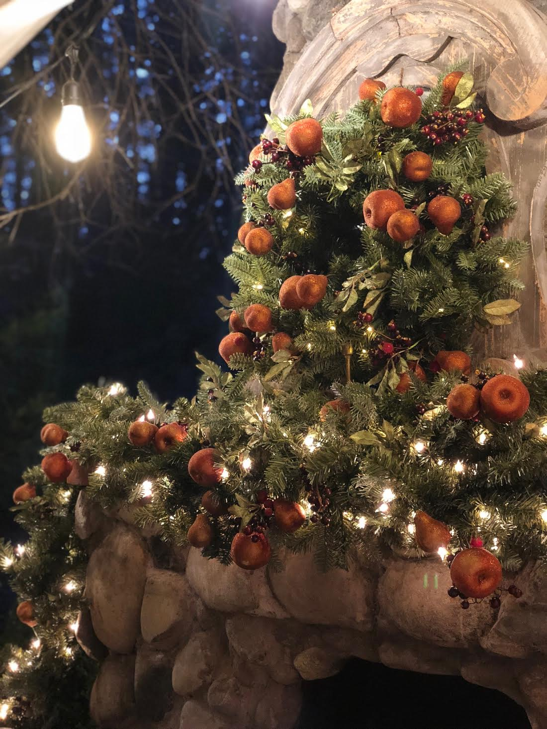 Enchanting Outdoor Christmas Decor With Twinkly Lights