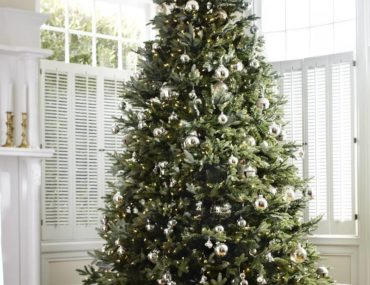 Balsam Hill Fraser Fir Artificial Christmas Tree