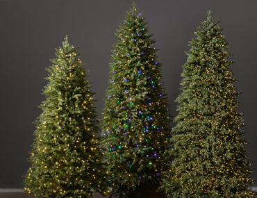 Christmas tree lights of different types