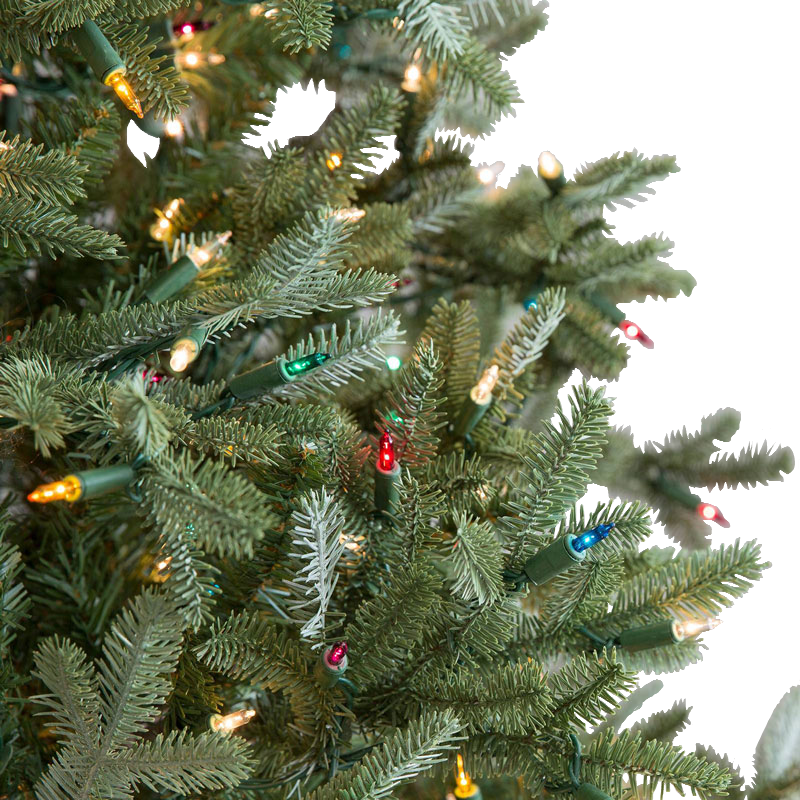 Color and clear lights on tree
