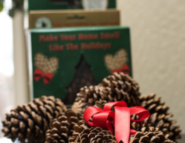 pinecones as fall to winter home decor