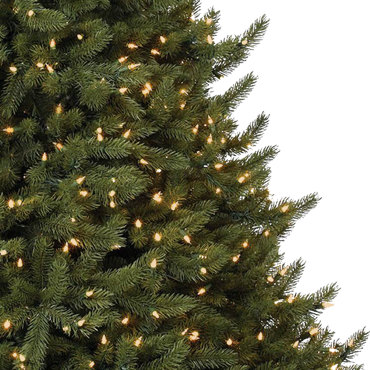 Tree with clear lights