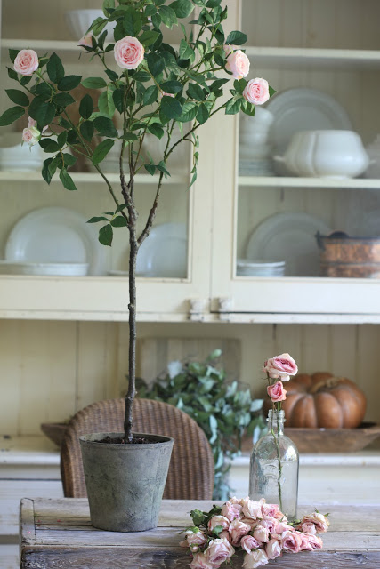 Balsam Hill Surrey Rose Potted Plant set on kitchen table